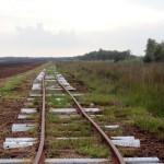 Gleise der Torfbahn im Himmelmoor bei Quickborn