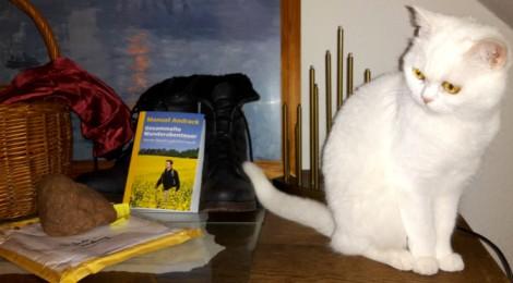 Wander-Buch mit Katze